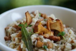 risotto z kurkami, tyminkiem i szałwią