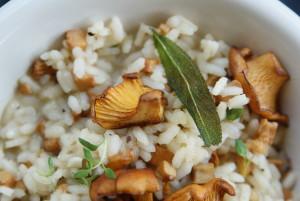 risotto z kurkami, tymiankiem i szałwią