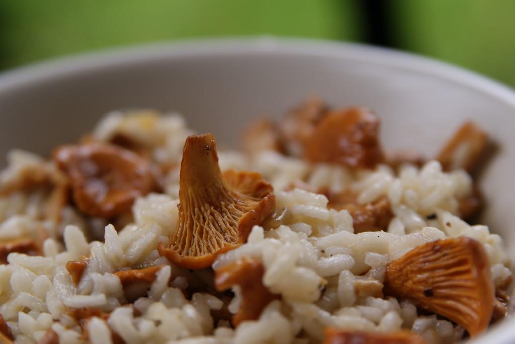 risotto z kurkami